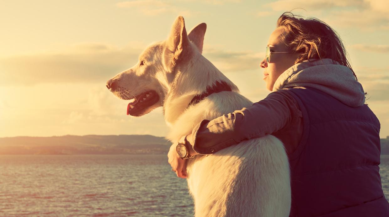 Ocho sentimientos que las personas con perros saben disfrutar mascotas vi - Animales con personas apareandose ...