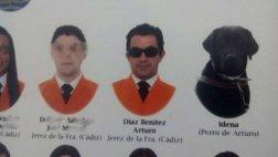 Idena, el perro guía graduado en una universidad de España