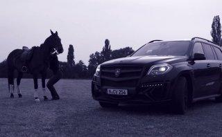 YouTube: Mercedes GL frente a un caballo