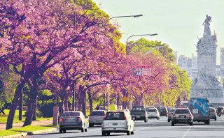 Rutas que florecen: Argentina, Uruguay y Brasil