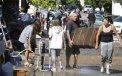 Francia: Lluvias torrenciales dejan 17 muertos