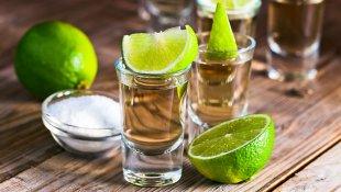 El agave del tequila podría ayudar contra la osteoporosis