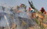 Cusco registra 120 incendios forestales en lo que va del año