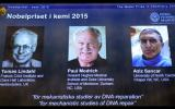 Premio Nobel de Química para estudios sobre reparación del ADN