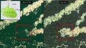 Mira la gran deforestación en la Amazonía en Perú