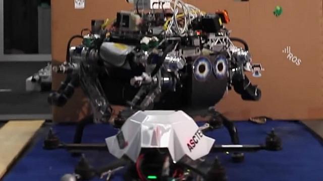 Robot forex automatizado gratis