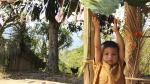 Chanchamayo, Villa Rica y Satipo: viaje al centro de la selva - Noticias de ticlio
