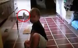¿Un duende en casa? Video en YouTube muestra extraña criatura