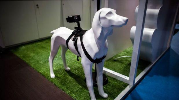 Se mostró una gran variedad de accesorios para perros que permiten interconexión con sus dueños. (Foto: AFP)