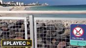 Miami: migración de tiburones causa alarma en playas [VIDEO]