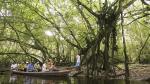 Tingana: descubre el paraíso amazónico junto a Moyobamba - Noticias de paita