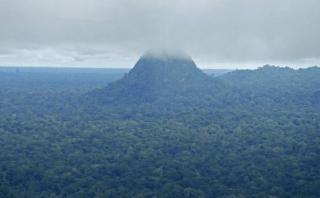 Sierra del Divisor: Avaaz felicita al Gobierno por crear parque