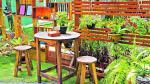 Cinco pasos para cuidar el jardín durante las lluvias - Noticias de