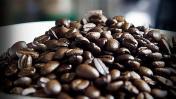 Café peruano retomaría picos de producción antes del 2020