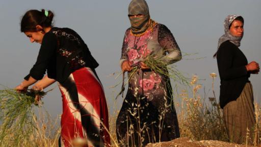 La minoría yazidi ha sido esclavizada por Estado Islámico