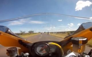 YouTube: ¿Qué harías si aparece una serpiente en tu moto?