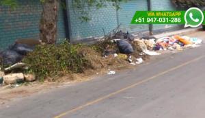 Chorrillos: podan árboles y dejan ramas en vía pública (VIDEOS)