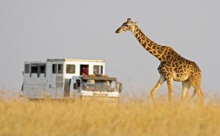 Todo lo que debes saber para planificar tu viaje a África