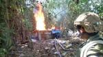 Destruyen dos laboratorios de droga en Huánuco y Ucayali - Noticias de laboratorios de droga