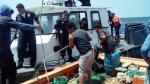 Intervienen embarcación que hacía pesca de arrastre en Paita - Noticias de piura