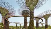 Los nuevos Patrimonios de la Unesco que dejó el 2015