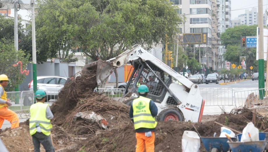 Magdalena: retiran últimos árboles para obras pese a protestas
