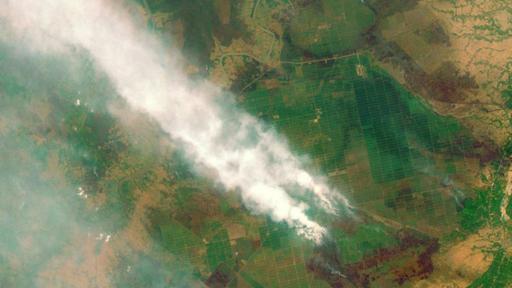 Los incendios forestales en Kalimantan, Indonesia, se han convertido este año en un serio problema en el sureste asiático. (BBC)
