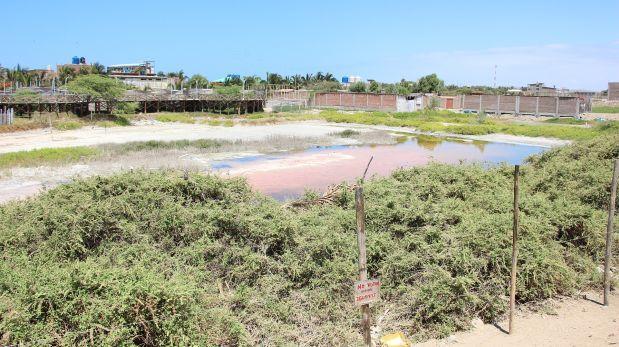 Máncora pierde el 70% de su humedal debido a invasiones