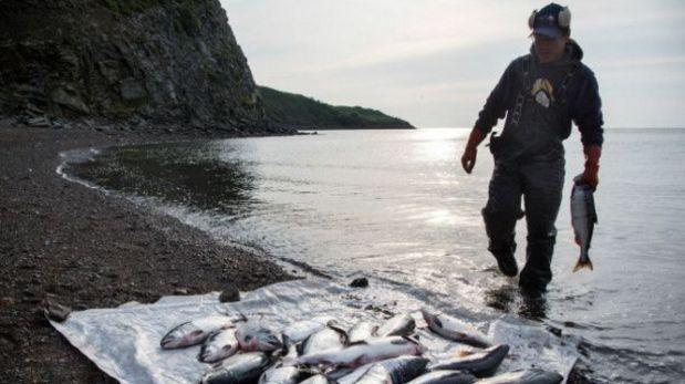 La pesca del salmón es vital para el trabajo y la alimentación de las comunidades en esta región. (Foto: Getty Images)