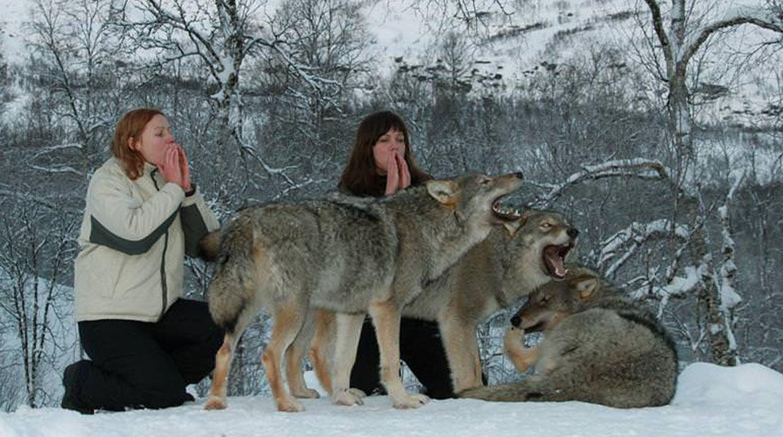 (Foto: polarpark.no)