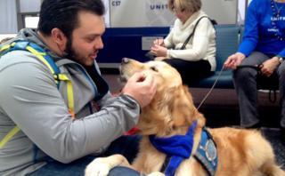 Esta aerolínea utiliza perros para calmar pasajeros nerviosos