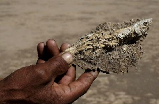 ¿Cómo se secó el Poopó, el segundo lago más grande de Bolivia?