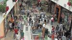 Se abrirán al menos 6 'malls' el próximo año en el Perú - Noticias de percy vigil