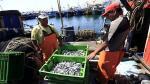 Produce autoriza segunda temporada de pesca en zona sur - Noticias de fenómeno climático la niña