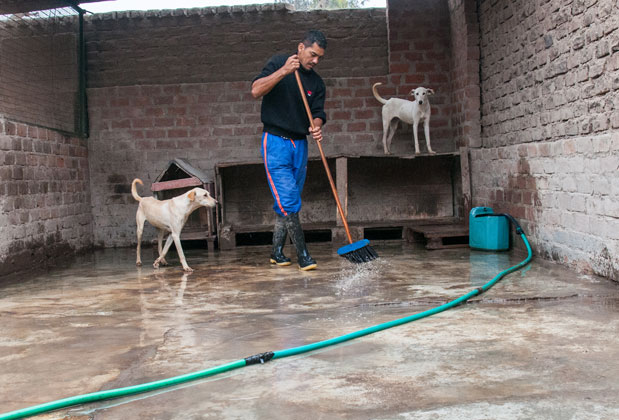 [Foto] Una labor digna, sacrificada y humana