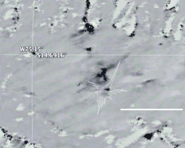 Prueba. Esta es una de las imágenes captadas por avión de la NASA. Las manchas negras demuestran el área dañada cerca del colibrí.