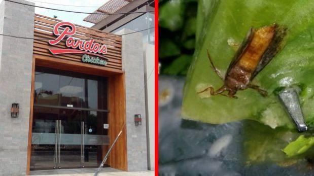 Clienta halló cucaracha en plato y Pardos Chicken cerró local