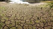 Zimbabue declara estado de emergencia por extrema sequía