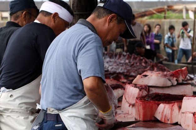 Wada es uno de cinco puertos que tienen permitido cazar ballenas en Japón. (Foto: AFP)