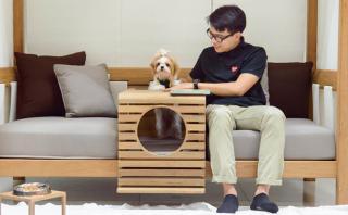 PET: el mueble  ideal para compartir con tu mascota