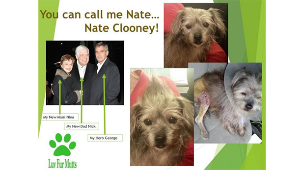 George Clooney, sus padres y Nate
