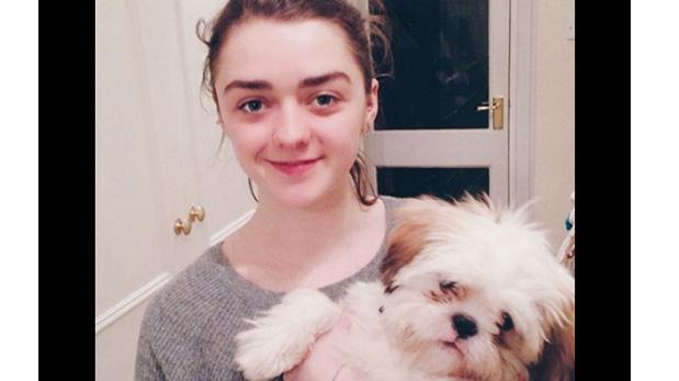 [Foto] Famosos que impulsan la adopción de mascotas