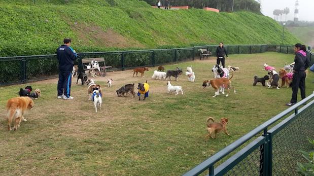 Área canina en el Parque Yitzhak Rabin, ubicado en pleno malecón de Miraflores.