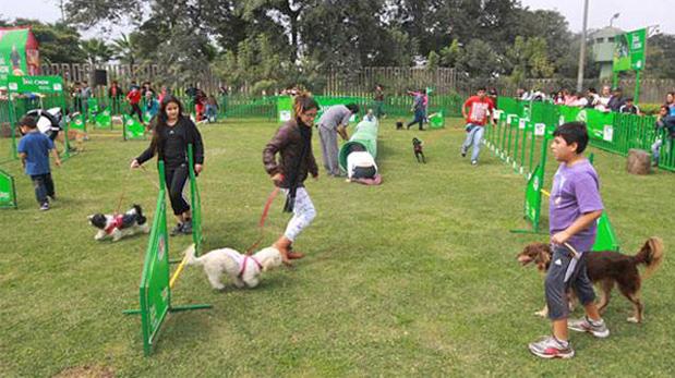Play Land Can, parque exclusivo para perros ubicado frente al Pentagonito, en San Borja.