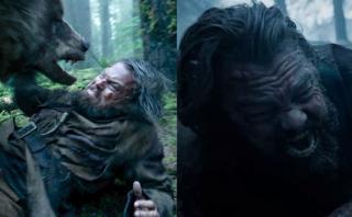 Oscar: las confesiones del oso que actuó con Leonardo DiCaprio