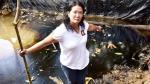 Keiko Fujimori no cambiará su estrategia de campaña - Noticias de martha heredia