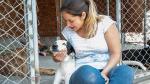 ¿Qué hay detrás de un perro adoptado? - Noticias de albergue canino