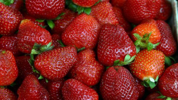 Fresas podrían impulsar diversificación productiva de Tacna