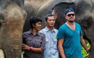 Leonardo DiCaprio se reúne con ambientalistas en Indonesia