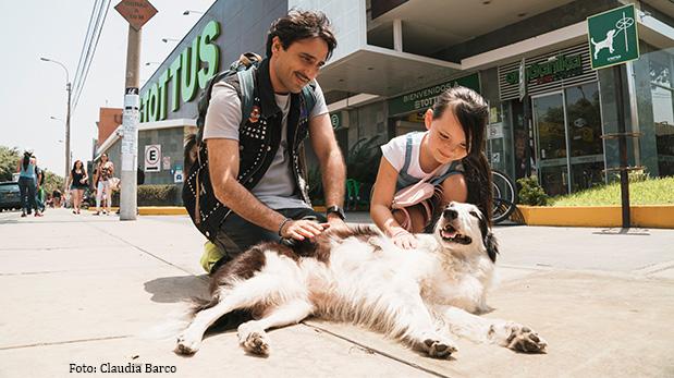 [Foto] Vanessa Saba, apasionada socorrista de animales desamparados